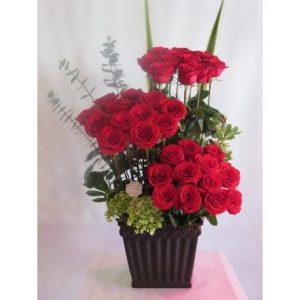 36-rosas